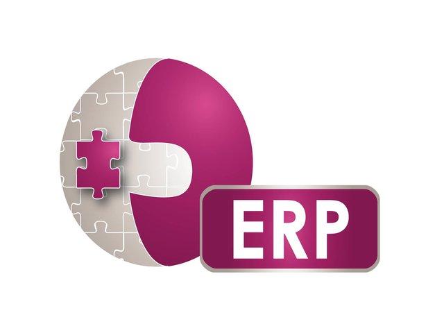 Odabir ERP rešenja i pravci razvoja IT strategije
